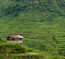 Banaue Rice Terraces by Andrew & Mariya  Rovenko