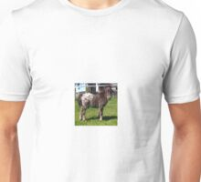 Miniature Shetland Foal Unisex T-Shirt
