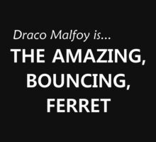 Draco Malfoy- the amazing, bouncing ferret! by loveaj