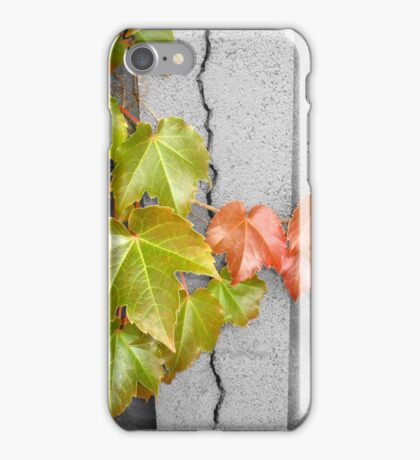 Splitting Season iPhone Case/Skin