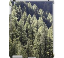 A larch forest in autumn iPad Case/Skin