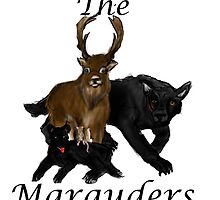The Marauders by AceTheRaven