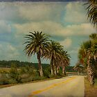 Ormond Beach Loop by Deborah  Benoit