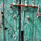 The Green Old Door by Michele Filoscia