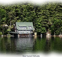 St. Lawrence Seaway/Thousand Islands #17 by Rose Santuci-Sofranko