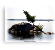 St. Lawrence Seaway/Thousand Islands #22 Canvas Print