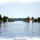  St. Lawrence Seaway/Thousand Islands #27 by Rose Santuci-Sofranko