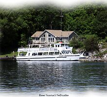 St. Lawrence Seaway/Thousand Islands #31 by Rose Santuci-Sofranko