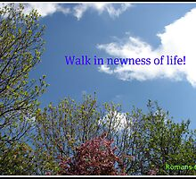 In Newness of Life by BlueMoonRose