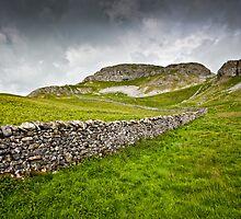 Attermire Scar, Yorkshire Dales by David Lewins