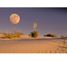 Sand Dunes Heaven  Photographic Print