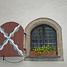 A Window at Schloss Maunterndorf by Lee d'Entremont