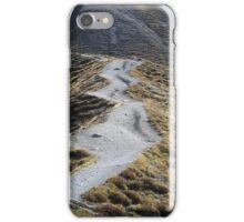 Way in alpine grassland iPhone Case/Skin