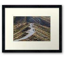 Way in alpine grassland Framed Print