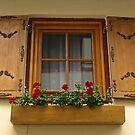 An Austrian Window by Lee d'Entremont