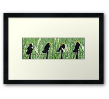 There's One in Every Crowd ! Framed Print