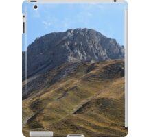 Alpine grassland iPad Case/Skin