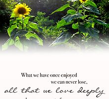 All That We Love Deeply by Franchesca Cox