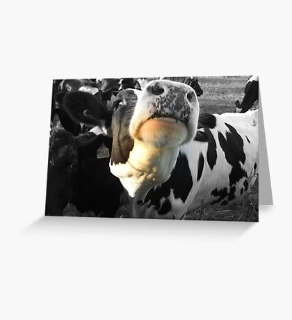 Will You Scratch Under My Chin  No 2 Greeting Card