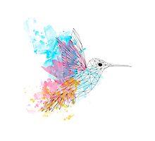 Poly Hummingbird Photographic Print