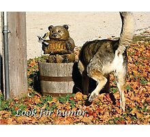 Look for Humor to Brighten Your Day Photographic Print