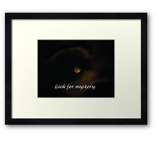 Look for Mystery Everywhere Framed Print