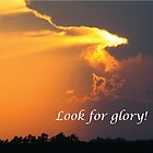 Look for Glory That Is Uplifting by Deb Fedeler