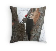Piliated Woodpecker, Muskoka Throw Pillow