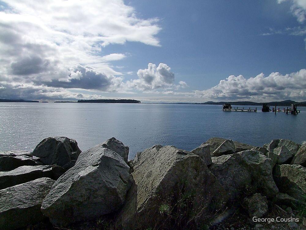 Quiet Day on Saanichton Bay by George Cousins