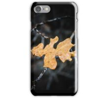 Single Brown Oak Leaf iPhone Case/Skin