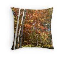 Autumn Trees and Colours Throw Pillow