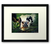 Here! I Want To Ask You Something!  - No 1 Framed Print