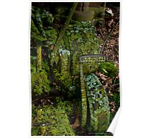 Overgrown Poster