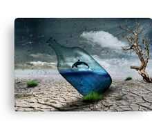 Dolphin in a Bottle Canvas Print