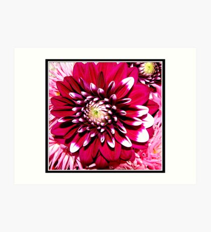 Gorgeous Red Flower Art Print