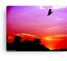 distorted sky Canvas Print