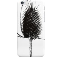 Classic Thistle Photograph iPhone Case/Skin