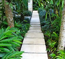 Stepping Stone Path by Ali Brown
