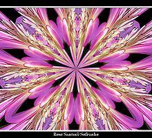 Pink Waterlily Kaleidoscope by Rose Santuci-Sofranko