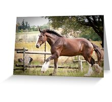 Sherman Greeting Card
