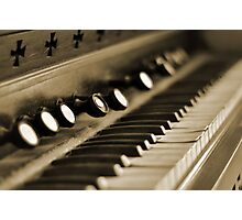 Keys of Ivory - Sepia Photographic Print
