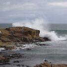rock fishing  - splash!!! by gaylene