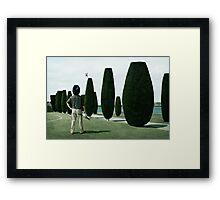 Gardnier Framed Print