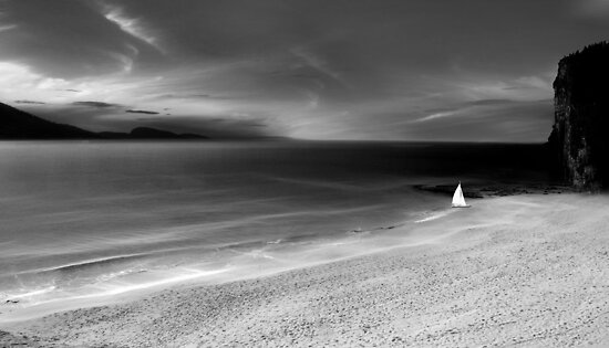 just another day in paradise (bw) by John Poon