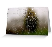 Imagine a multidimensional spider's web... Greeting Card