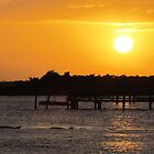 Sunset and Dolphins by Cynthia48