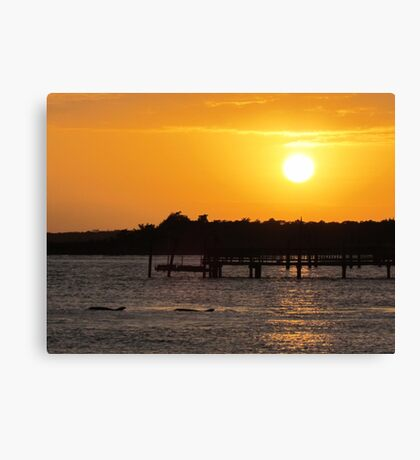 Sunset and Dolphins Canvas Print