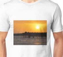 Sunset and Dolphins Unisex T-Shirt