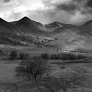 Glen Etive - Woven In Light (B&amp;W Version) by Kevin Skinner