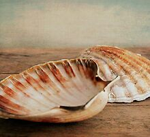 Coquilles St.Jacques by Iris Lehnhardt
